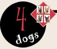 4Dogs Dog Supplies