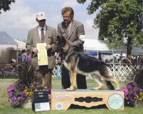 Blue goes Best of Breed and Group 3